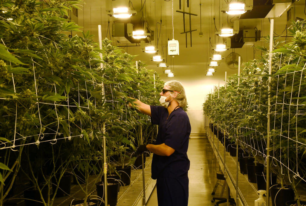 Kansas lawmakers should just go ahead and legalize recreational use of marijuana
