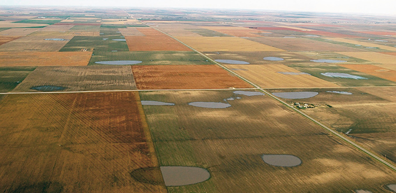 Role of western Kansas mini-wetlands on farming, aquifer under a microscope