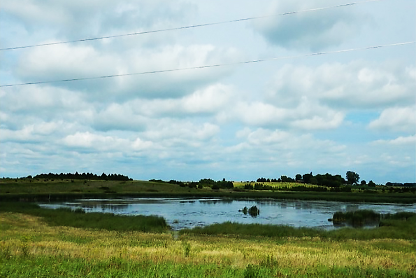 Building wetlands along waterways best option to deter runoff from Midwest crop fields